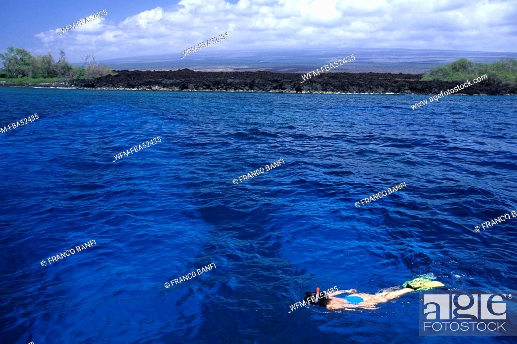 Stock Photo: Snorkeling at Coast of Hawaii, Kona, Big Island, Hawaii, USA.