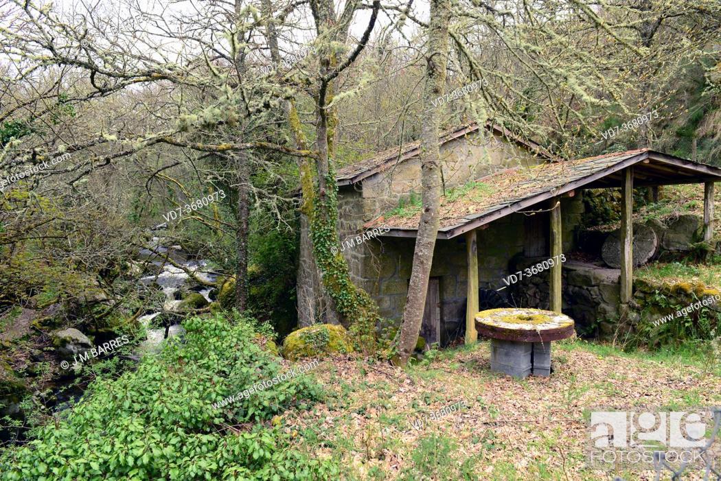 Imagen: Castro Caldelas, water mill next to Edo river. Ourense province, Galicia, Spain. . Ourense province, Galicia, Spain.