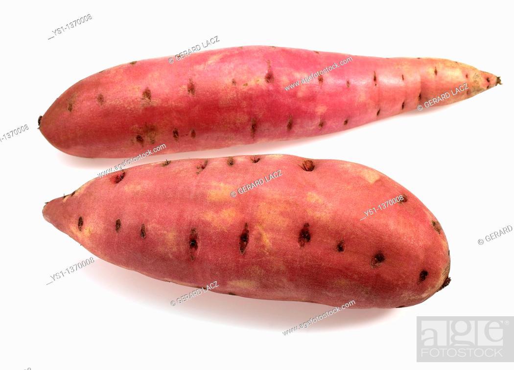 Stock Photo: SWEET POTATO ipomoea batatas AGAINST WHITE BACKGROUND.