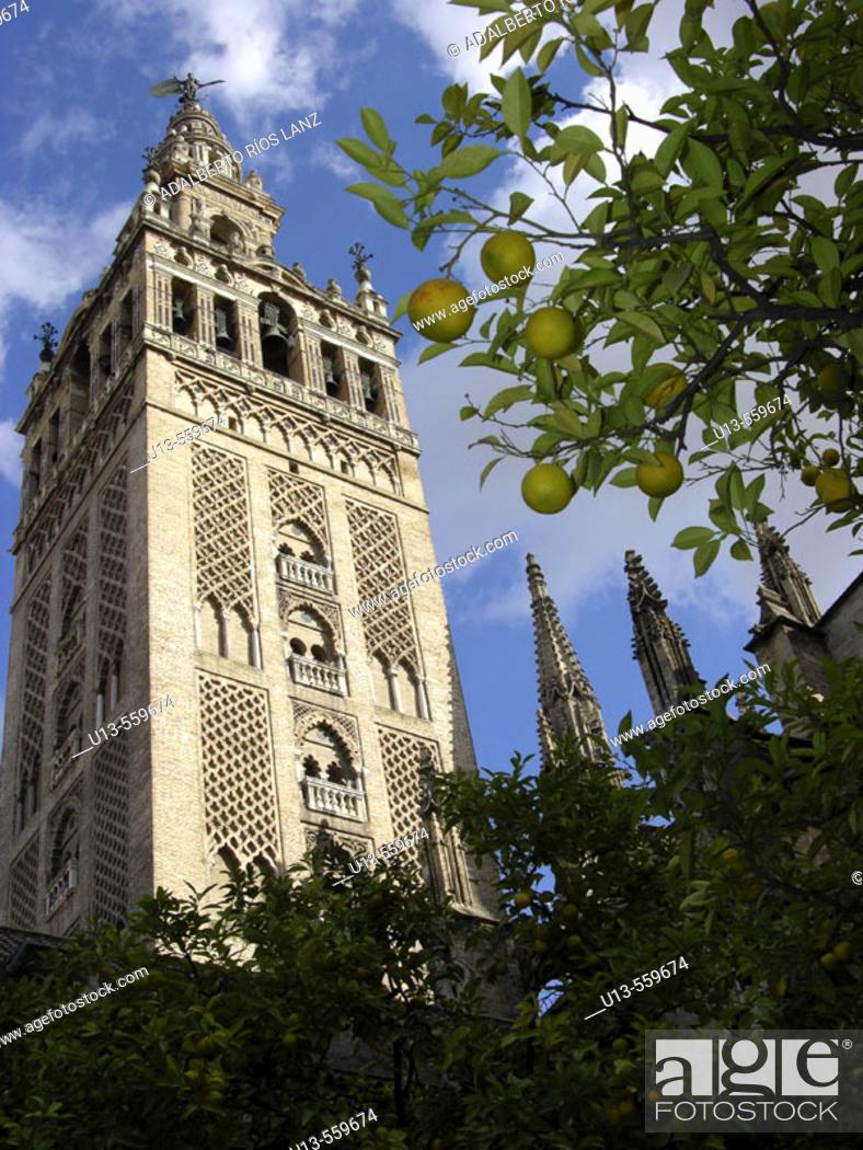 Stock Photo: Giralda tower. Sevilla. Spain.