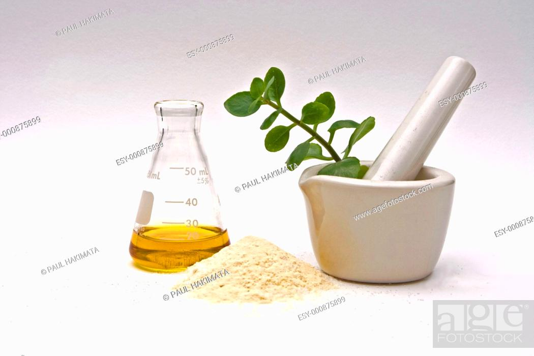 Stock Photo: A yellow liquid in a flask with a powder in front and a white mortar with asome leaves in it on a white background.