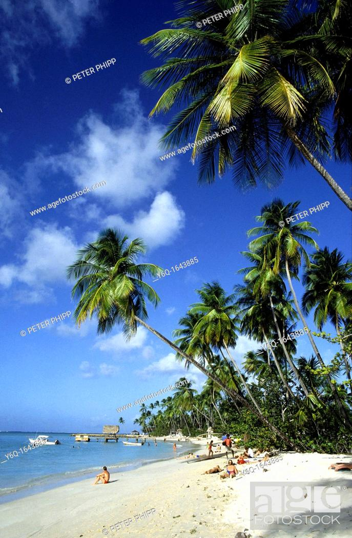 Stock Photo: Beautiful clean caribbean beach at Pigeon Piont in Tobago.