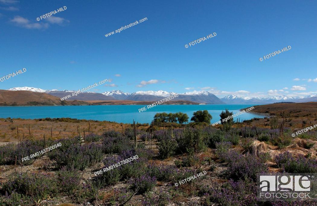 Stock Photo: Lake Tekapo, Mackenzie District, Canterbury Region, South Island, New Zealand / Lake Tekapo, Mackenzie Distrikt, Region Canterbury, Südinsel, Neuseeland.