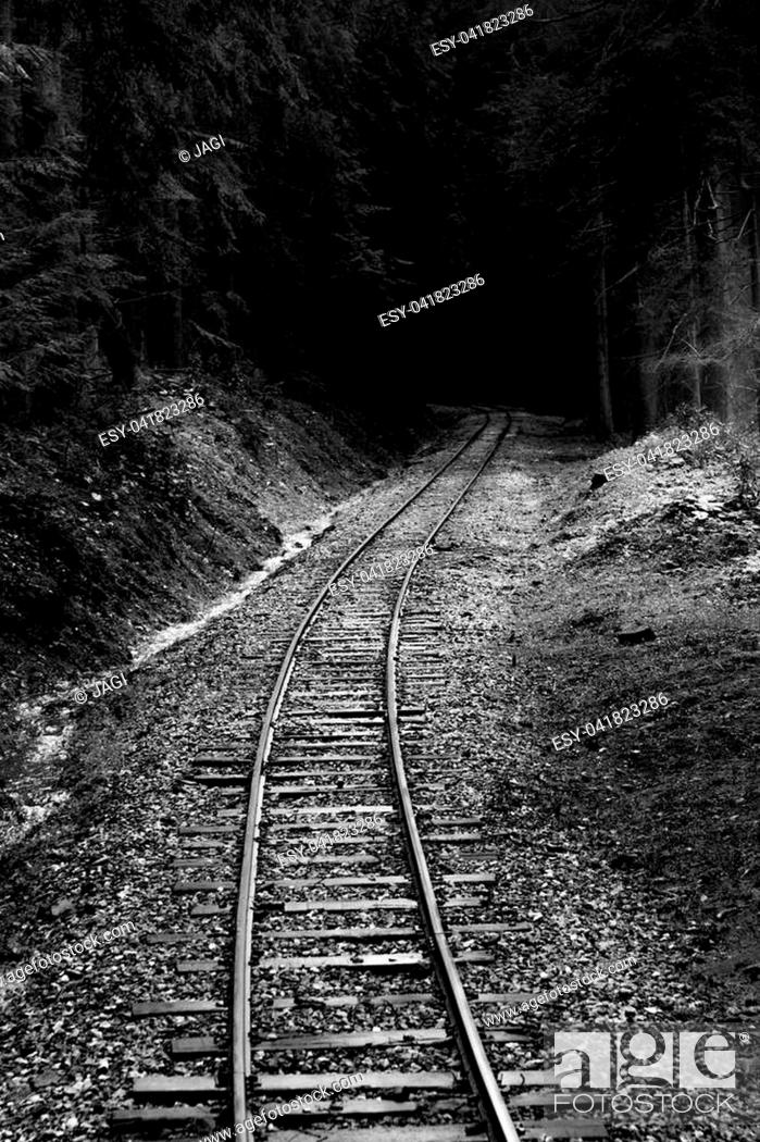 Stock Photo: Old railroad leading through forest.