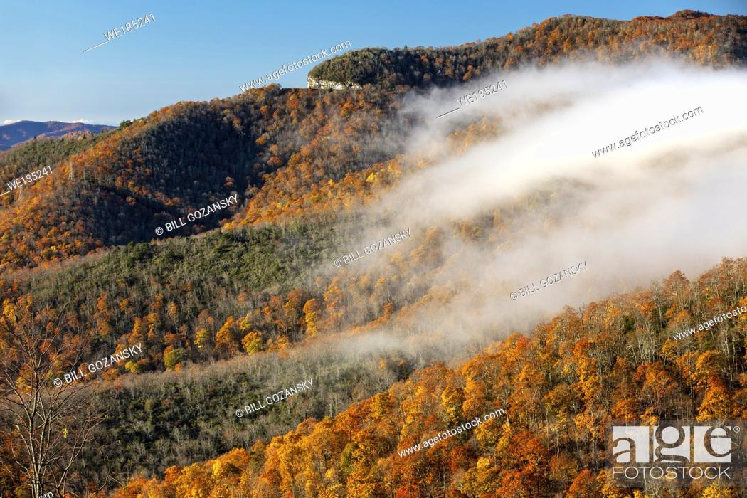 Stock Photo: Fall color on Blue Ridge Parkway, near Asheville, North Carolina, USA.