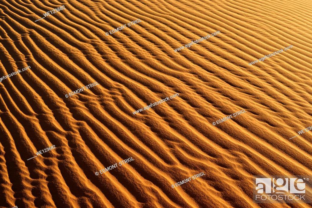 Imagen: Sandripples on sanddunes at Erg Mehejibad, Immidir or Mouydir, Algeria, Sahara, North Africa.