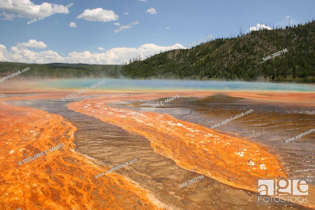 Stock Photo: Grand Prismatic Spring, Yellowstone National Park, Wyoming, USA.