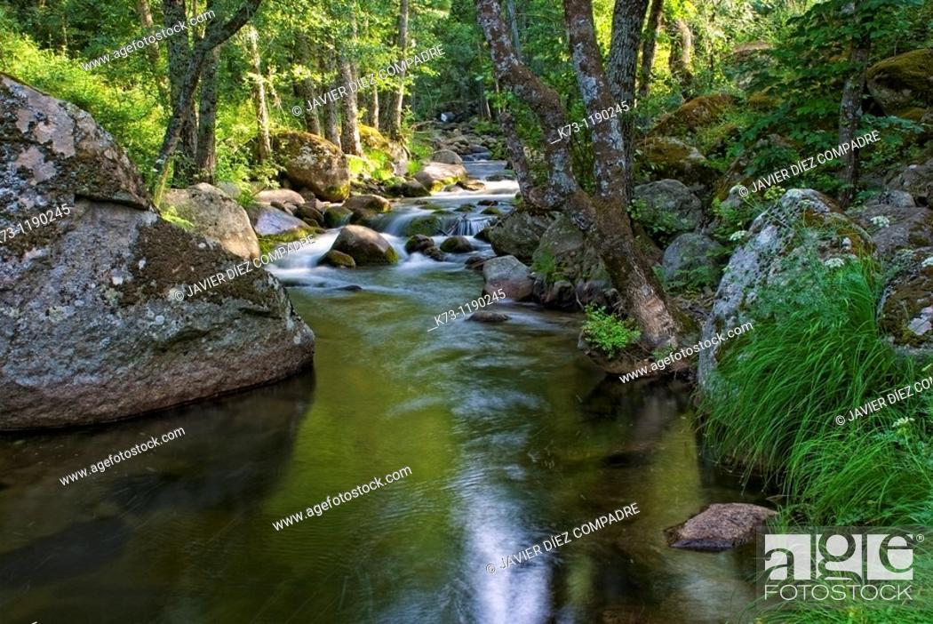 Stock Photo: Iruelas River  Iruelas Valley Natural Reserve  Avila province  Castilla y Leon  Spain.