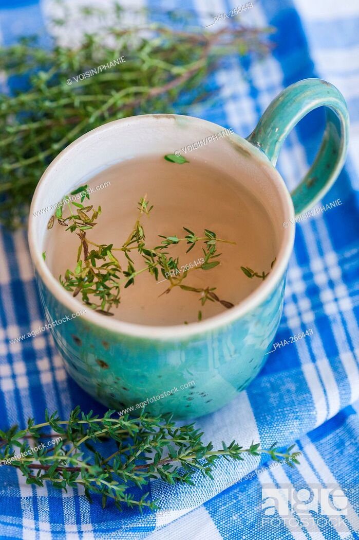 Stock Photo: Herbal tea of thyme.