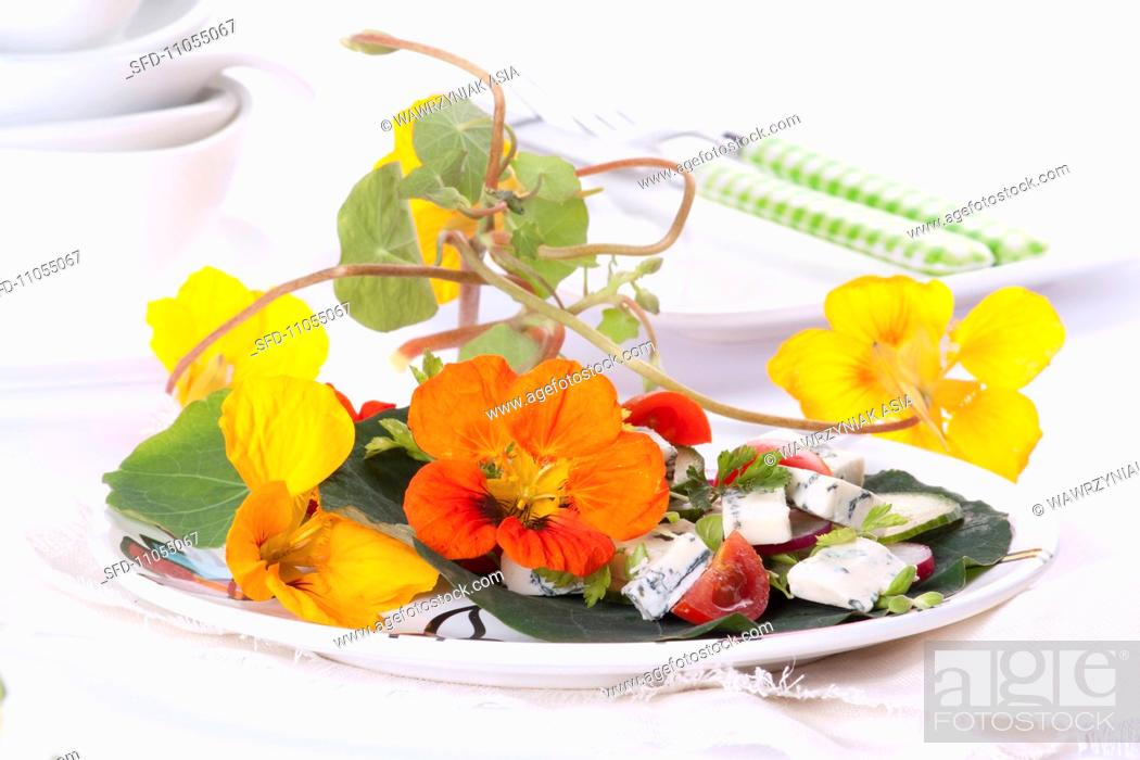 Stock Photo: Nasturtium flower and blue cheese salad.