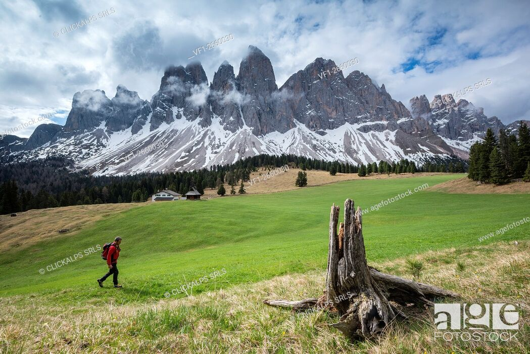 Stock Photo: Funes Valley, Dolomites, South Tyrol, Italy. View from Malga Glatsch to the peaks of the Odle.
