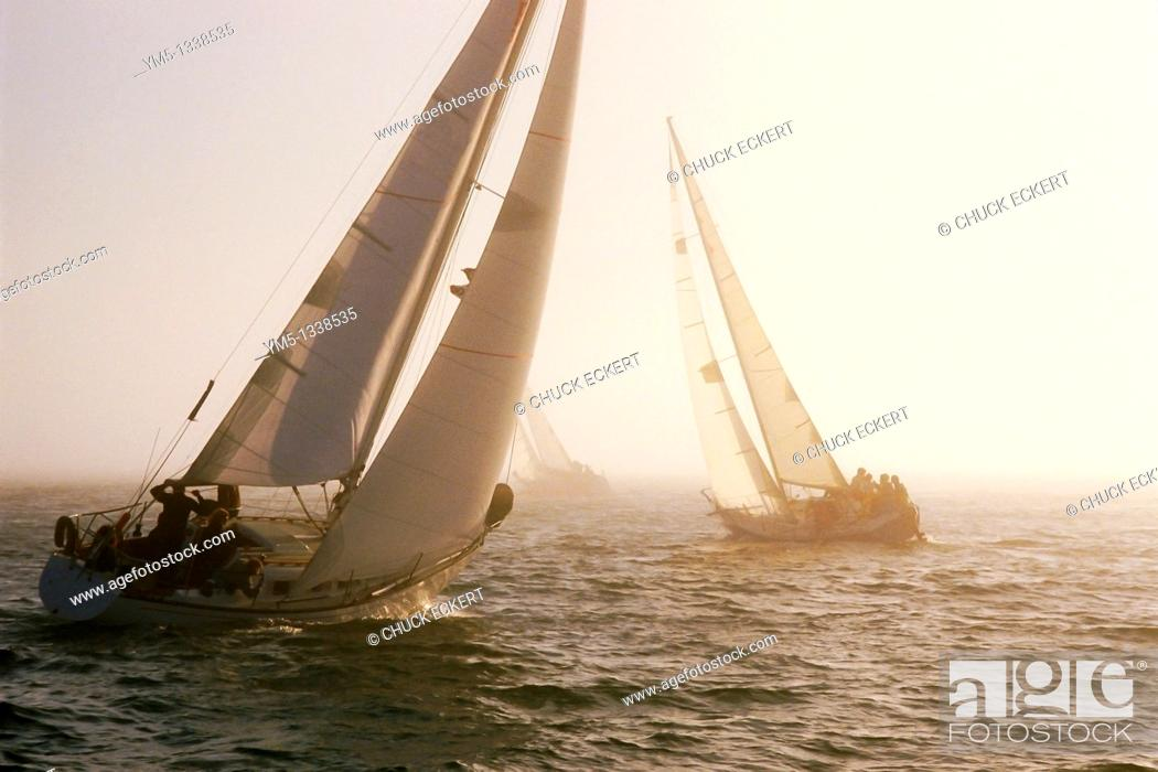 Stock Photo: Sailboats on upwind leg of ocean race in fog.