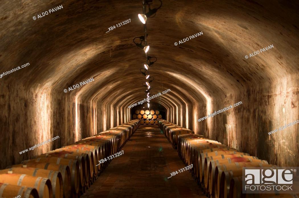 Stock Photo: Italy, Friuli, Collio, Capriva, Spessa castle, wine cellar.
