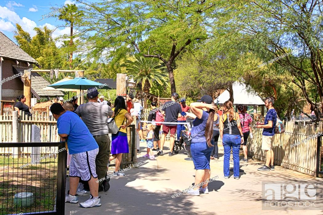 Stock Photo: People enjoying all the attractions at Reid Park Zoo in Tucson AZ.