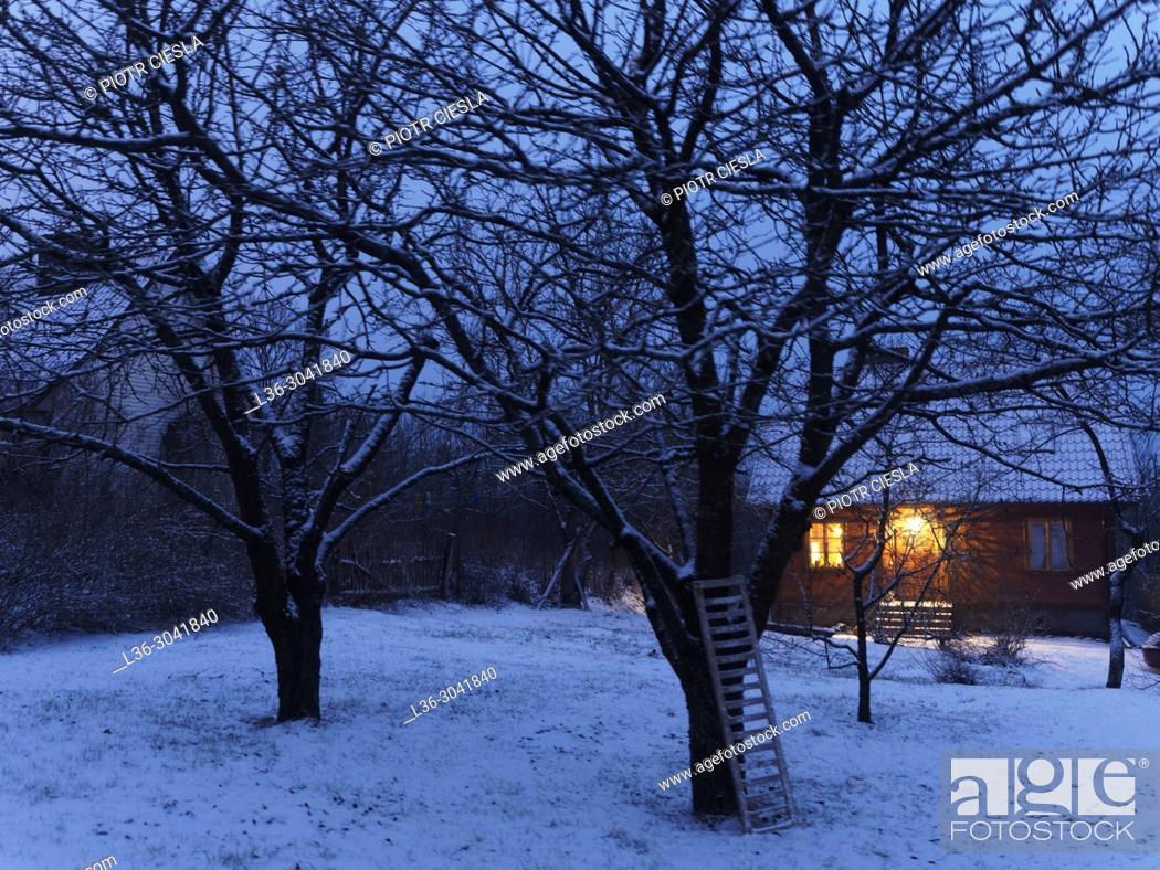 Stock Photo: Poland. Winter evening.