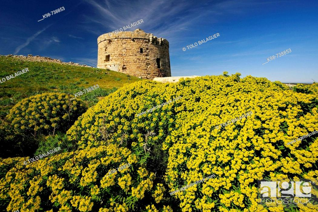 Stock Photo: Stuart tower (aka Torre d'en Penjat, 18th century) guarding the entrance to the port of Mao on Sant Esteve cove, Mao. Minorca, Balearic Islands, Spain.