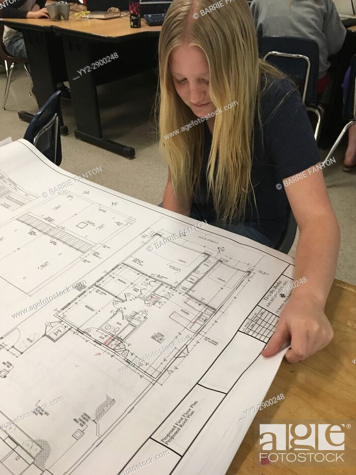 Stock Photo: 6th Grade Girl Looking at Architecture Plans, Wellsville, New York, USA.