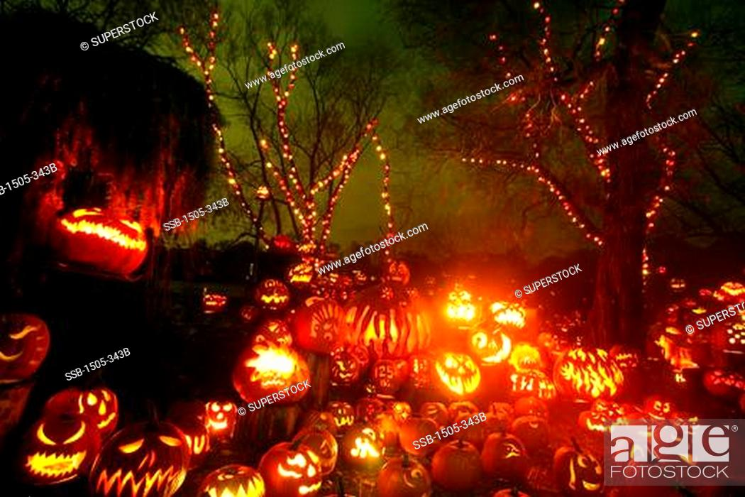Imagen: Jack o' lanterns lit up at night, Roger Williams Park Zoo, Providence, Rhode Island, USA.
