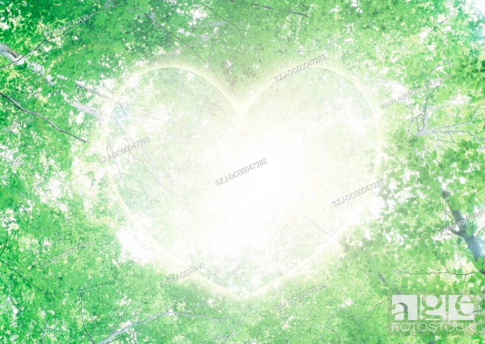 Imagen: Ecology image of fresh green and heart.