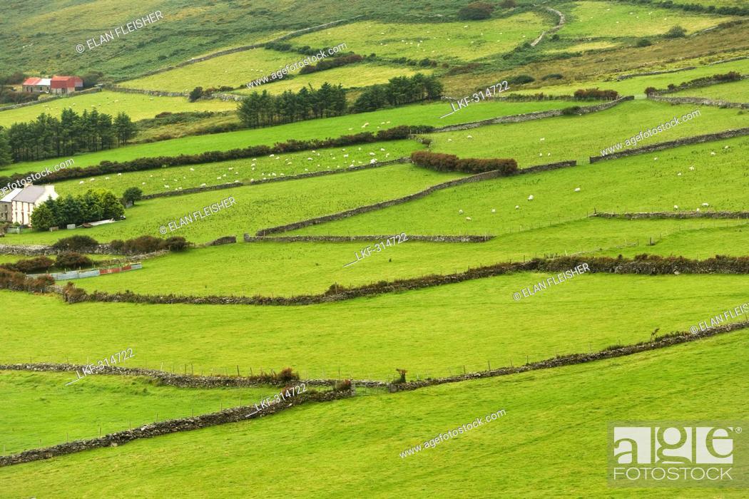 Stock Photo: Beenoskee Hills, Dingle Peninsula, County Kerry, Ireland.