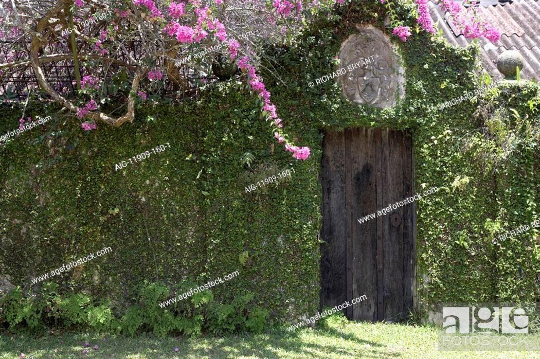 Stock Photo: Brief Garden, Sri Lanka.