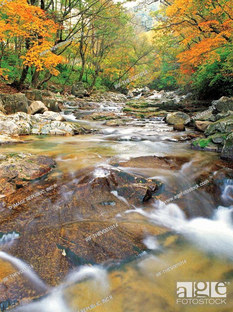 Stock Photo: valley in Autumn.