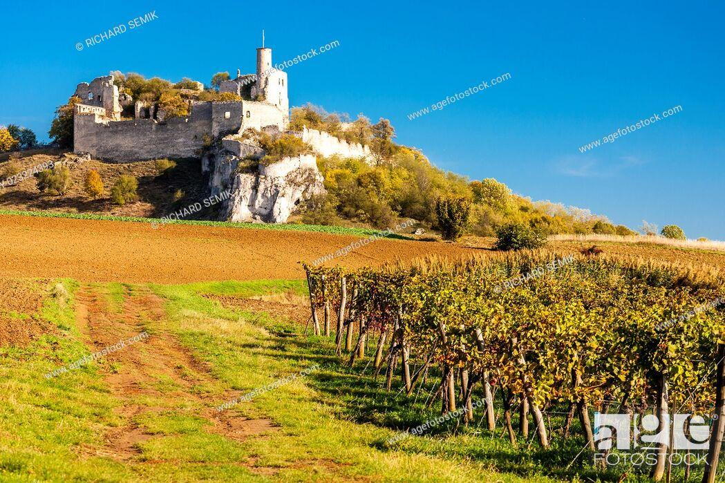 Stock Photo: ruins of Falkenstein Castle with vineyard in autumn, Lower Austria, Austria.