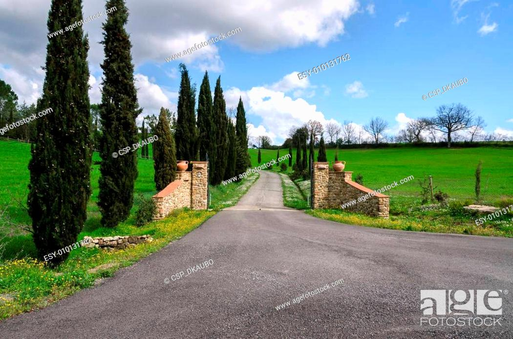 Stock Photo: gate in Tuscany.