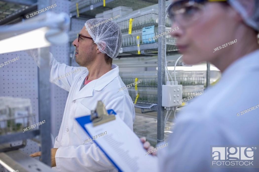 Stock Photo: Scientists working in lab wearing protective clothing.