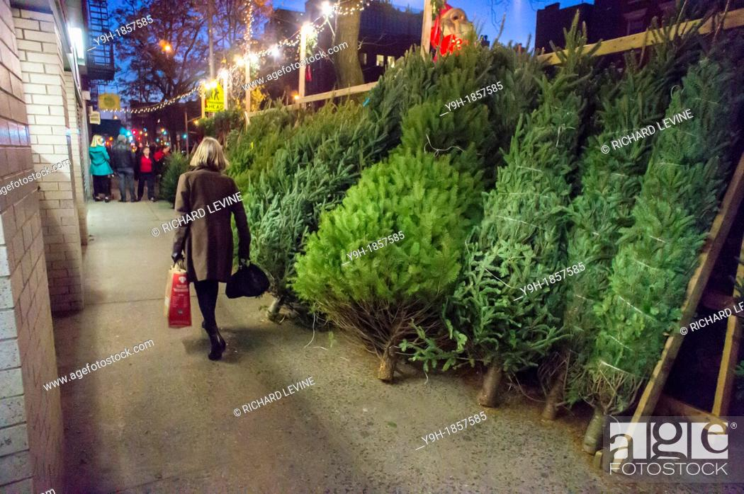 Stock Photo: Christmas trees for sale in the New York neighborhood of Chelsea There is wide disparity between tree prices between neighborhoods with the same tree going from.