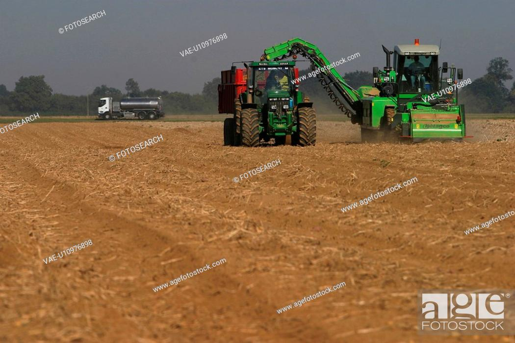 Stock Photo: outdoors, farm, farmland, field, ground, land.