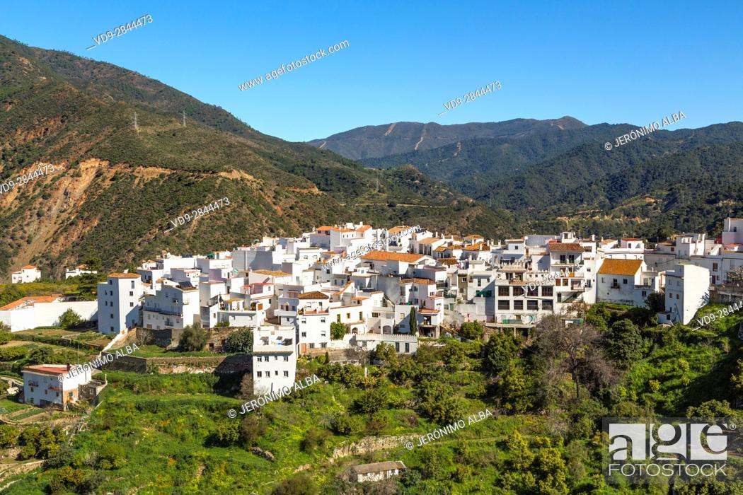 Stock Photo: White village of Istan. Natural Park Sierra de las Nieves. Malaga province Costa del Sol. Andalusia Southern Spain, Europe.