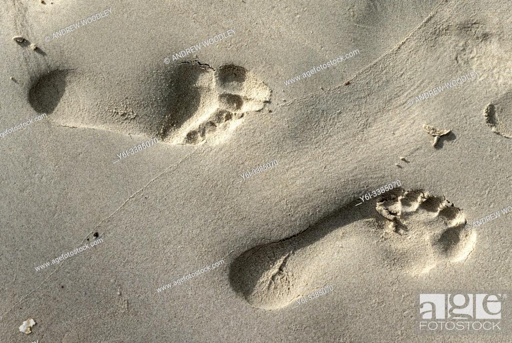 Stock Photo: Footprints in the sand, tropical island, Ko Pha Ngan, Thailand.