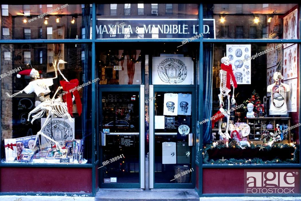 1058af6d Stock Photo - The worlds first and only Osteological Store, Columbus Avenue,  Central Park West, New York City, USA