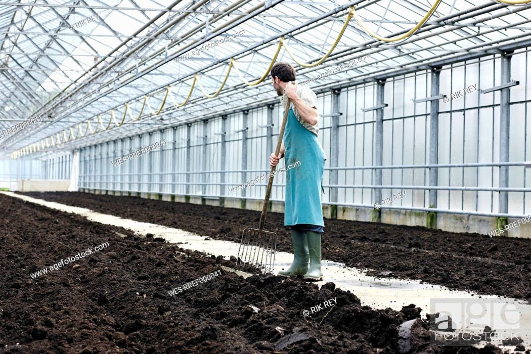 Stock Photo: Germany, Bavaria, Munich, Mature man digging soil with garden fork in greenhouse.