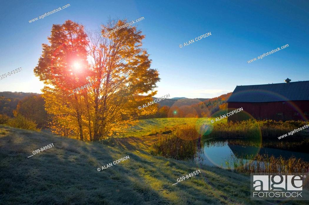 Stock Photo: USA, Vermont, nr Woodstock, Jenne Farm.