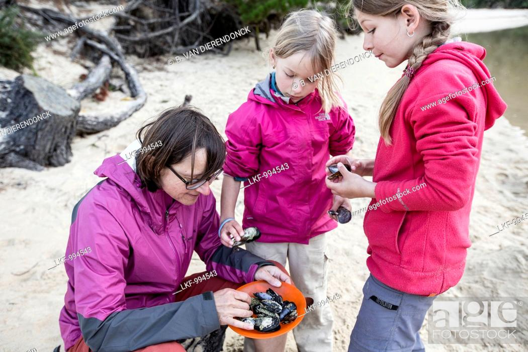Stock Photo: A woman and two girls collecting mussels, South Island, New Zealand.