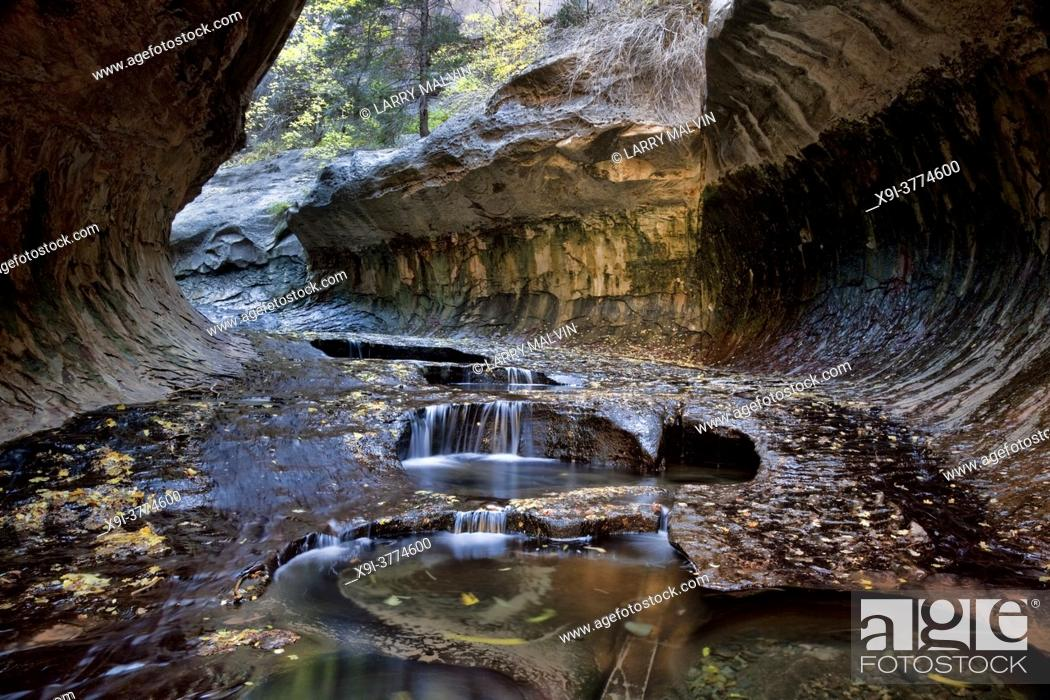 Stock Photo: Small cascades and pools at the entrance to the Subway, a unique tunnel scuplted by the Left Fork of North Creek in Zion National Park, Utah.