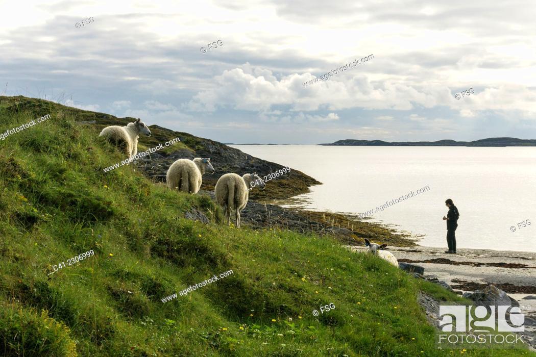 Stock Photo: Onoya, Nordland. Norway.