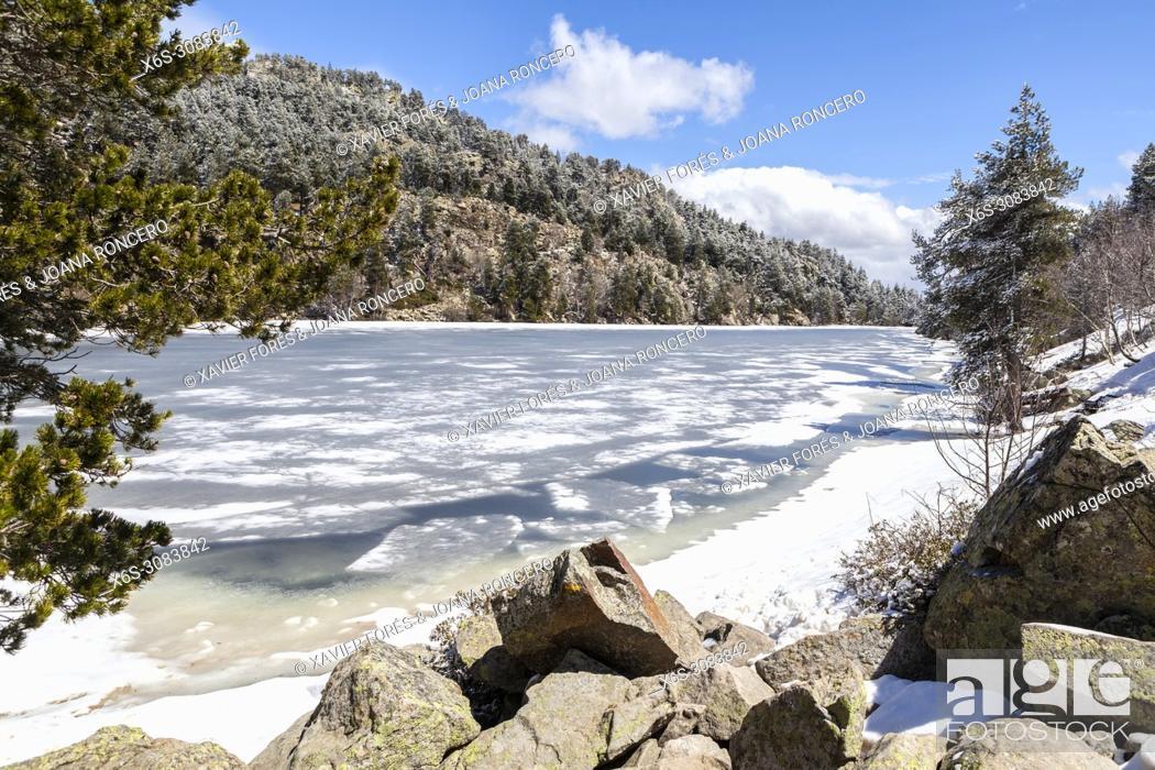 Stock Photo: Estany Llarg, Lac des Bouillouses area, Pyrénées-Orientales, France.