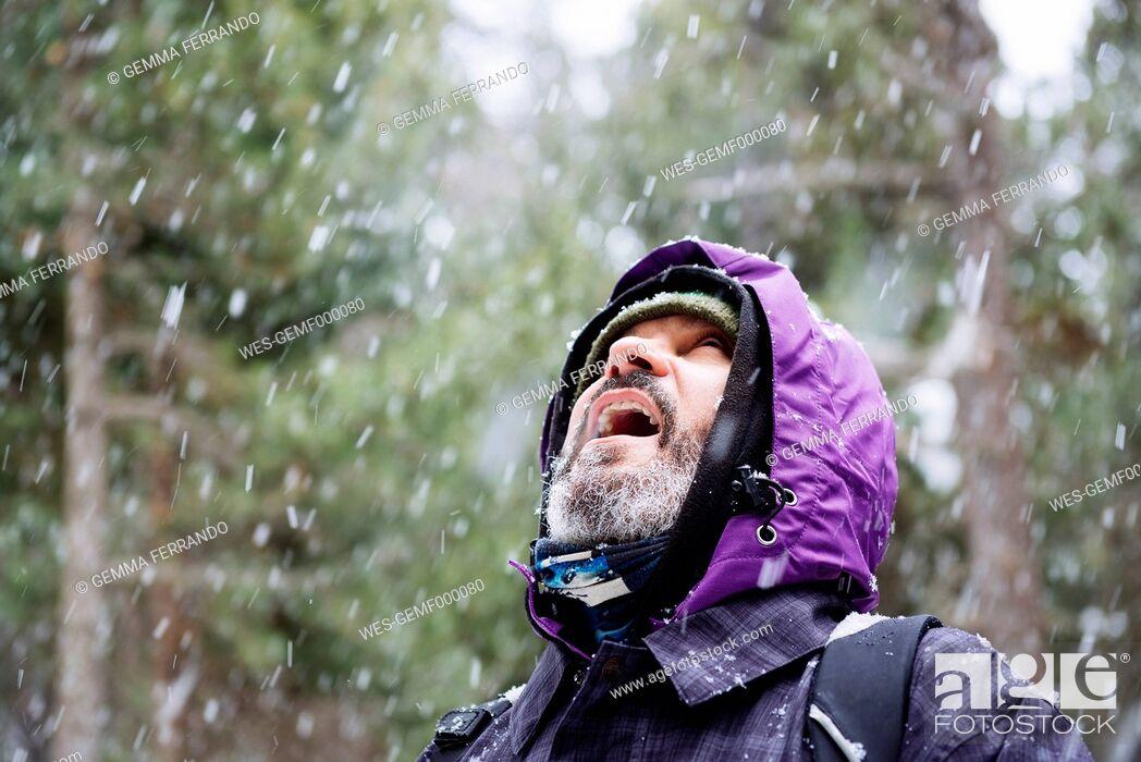 Stock Photo: Bearded man looking up in the forest while snowing.