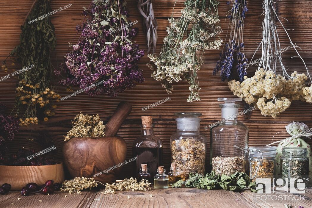 Stock Photo: Dried herbs hanging over bottles of tinctures and oils.