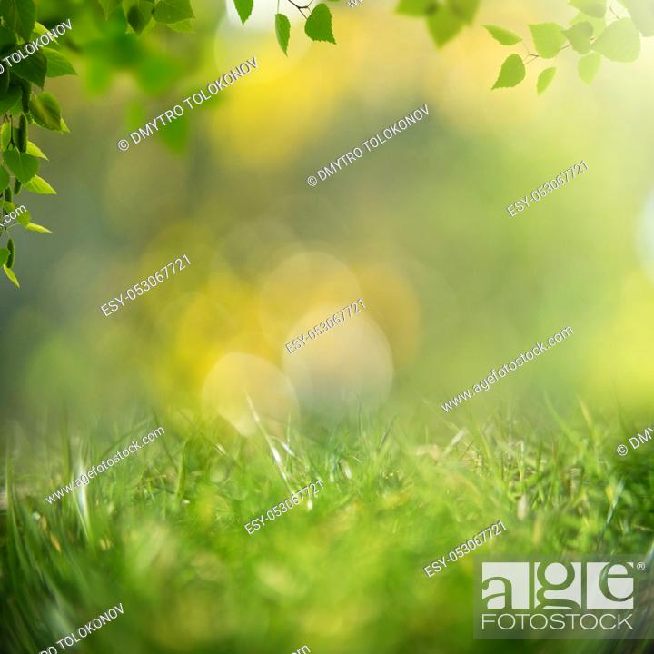 Stock Photo: Beauty healthy backgrounds with foliage, green grass and bokeh.
