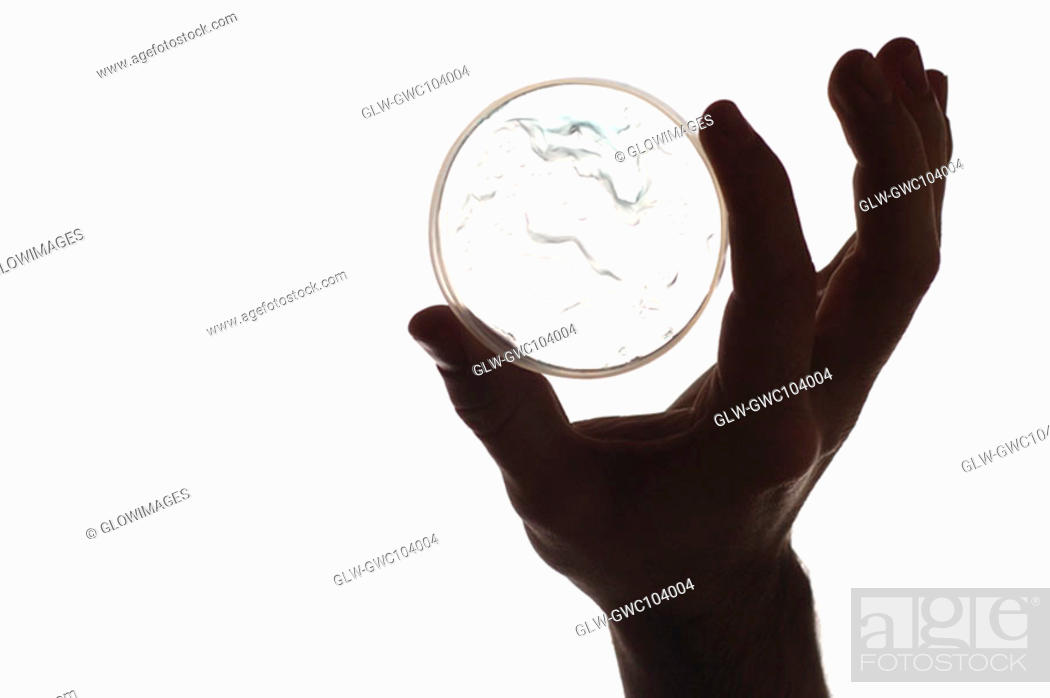 Stock Photo: Close-up of a petri dish in a person's hand.