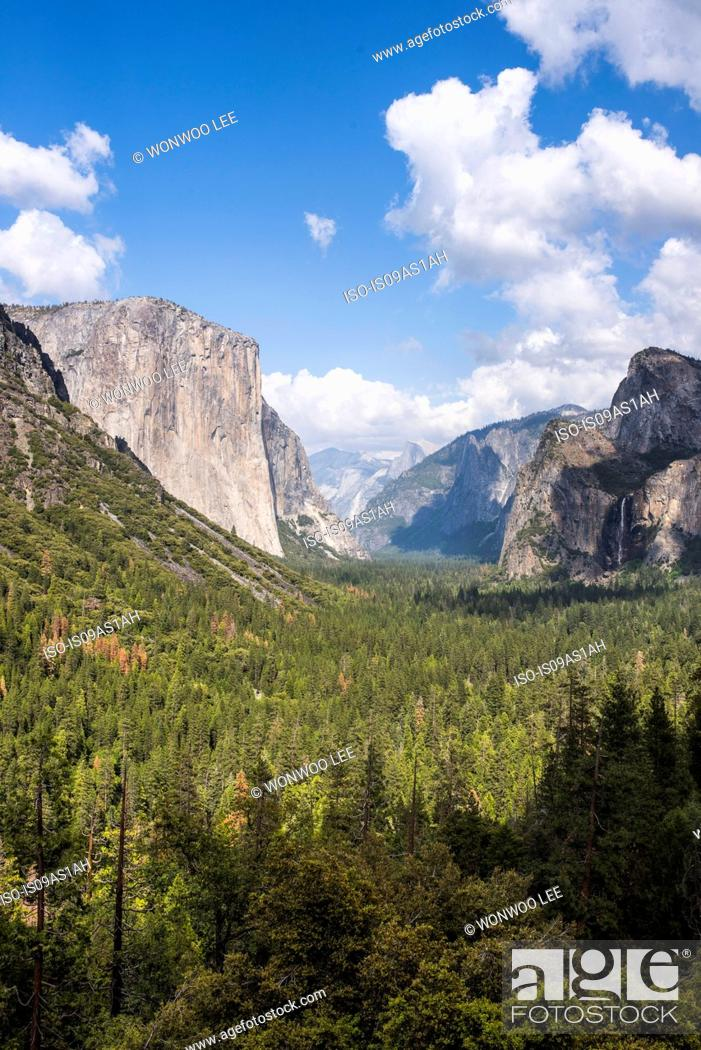 Stock Photo: View of mountains and valley forest, Yosemite National Park, California, USA.