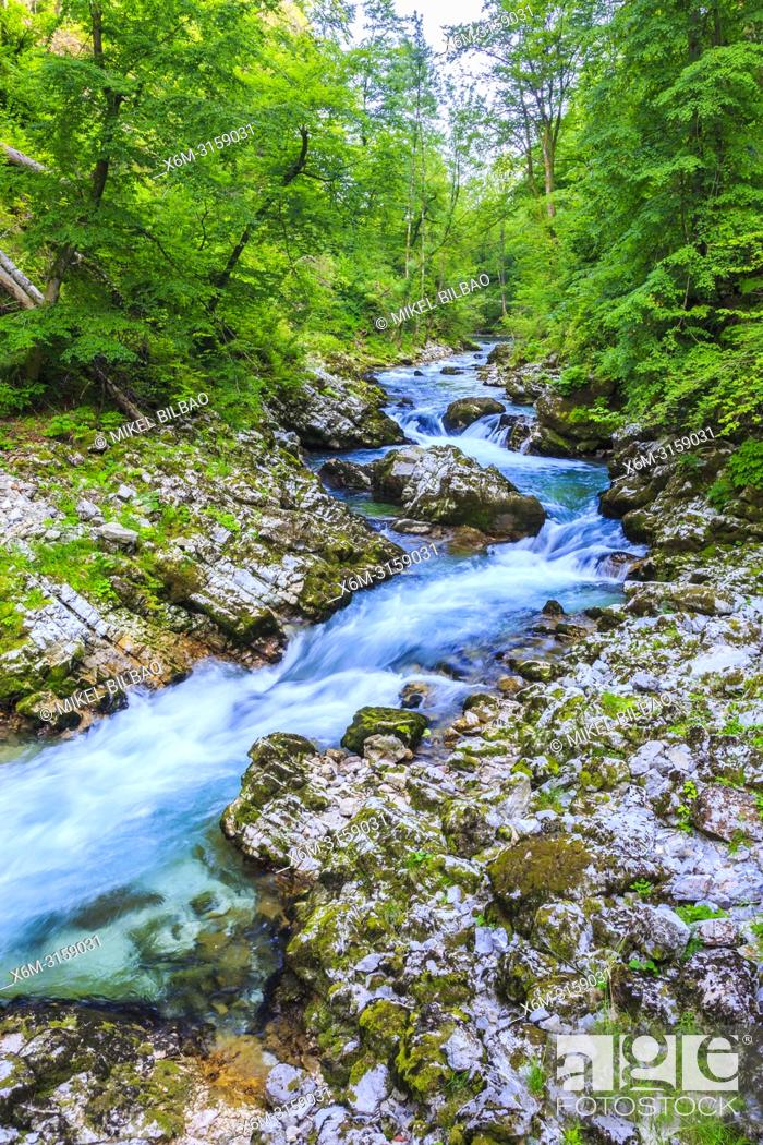 Stock Photo: Vintgar Gorge. Upper Carniola region. Slovenia, Europe.