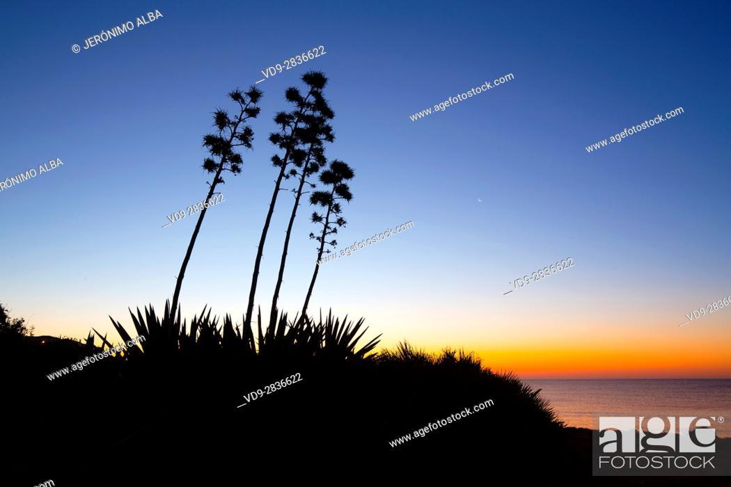Stock Photo: Beach at sunrise, Mijas. Malaga province. Costa del Sol, Andalusia Southern Spain. Europe.