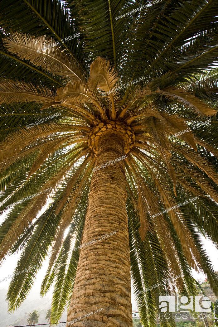 Stock Photo: La Gomera, Canary Islands.