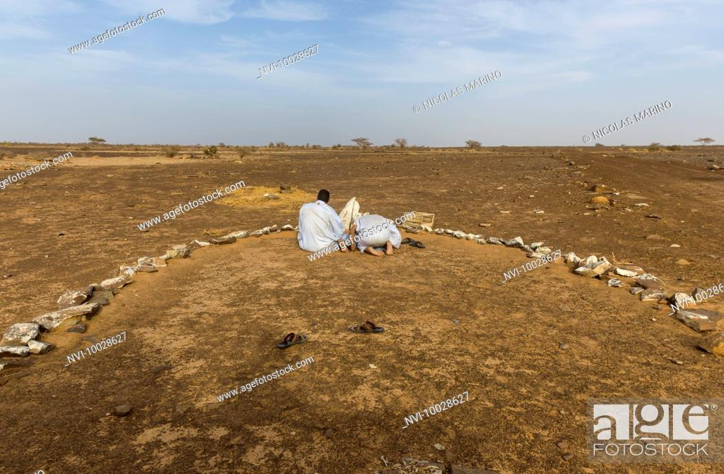 Stock Photo: Afternoon praying time in the Adrar, Mauritania.