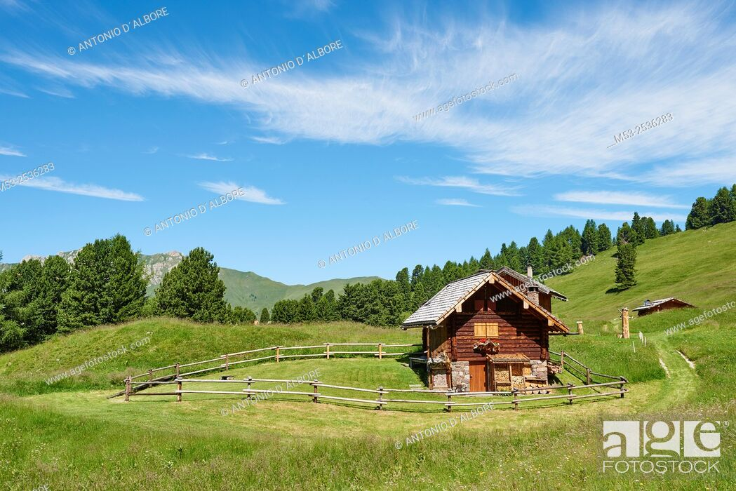 Imagen: A wodden cottage in the Parco Naturale Paneveggio - Pale di San Martino. Paneveggio. Trento Province. Trentino-Alto Adige. Italy.